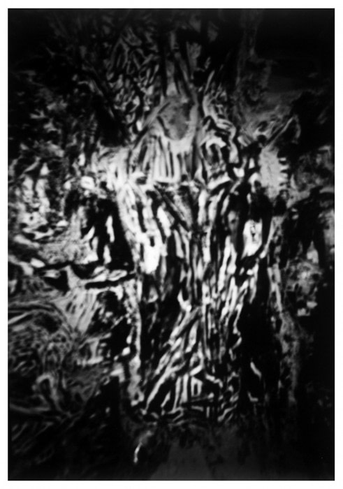 Este es el hilo que nos sostiene. Photographic record with pinhole camera, 120 x 180 cm. 2011